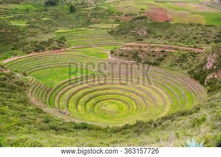 Agricultural Inca Circular Terraces In Sacred Valley, Moray, Sacred Valley, Peru, South America