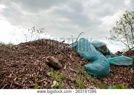 Environmental Pollution. Garbage Dump In The Field. Illegal Garbage Dump