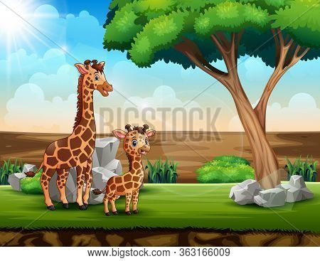 A Giraffe With Her Cub In A Savanna Field