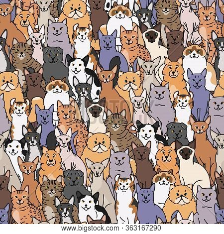 Cats Seamless Pattern Vector Domestic Pedigree Pets Contour Sketch Background.