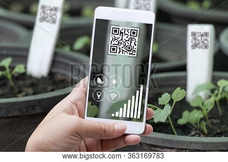 Smart Farming Agribusiness And Technology. Farmer Hand Using Smart Phone Scanning Qr Code Track Appl