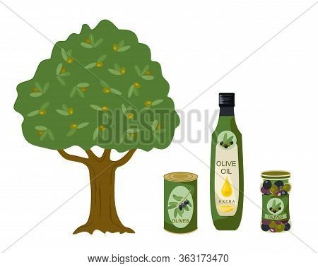 Olive Products Vector Collection. Olive Tree, Oil, Bottles Illustration. Bottle Of Olive Oil, Capaci