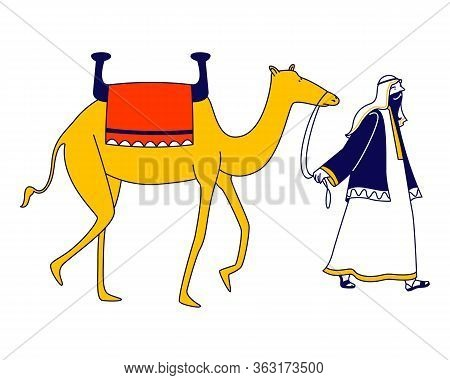 Male Character Wearing Arabic Dressing Leading Camel Isolated On White Background. Personage Of Arab
