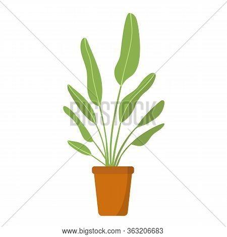 Hand Drawn Vector Illustration Of Tall Floor Indoor Plant In Clay Pot Bird Of Paradise. Room Interio