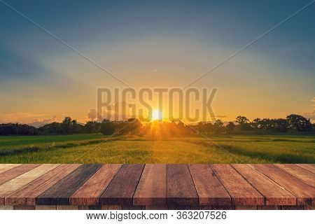 Rice Field Sunset And Empty Wood Table For Product Display And Montage.