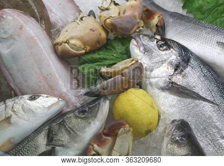 Fresh Freshly Caught Sea Bream And Many Other Types Of Fish For Sale In The Fishmonger Stall At The