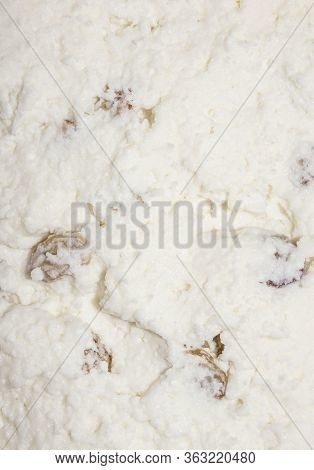 Cottage Cheese With Raisins.the Texture Of Cottage Cheese.curd Background With Raisins.