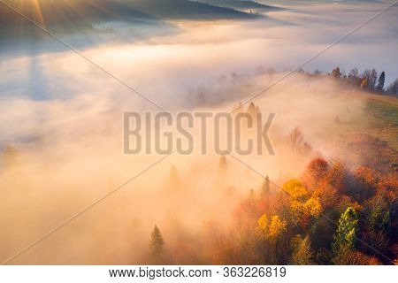 Vivid Morning Sunlight In Valley. Misty Autumn Sunrise In Mountains. Scenic Autumn Landscape With Co