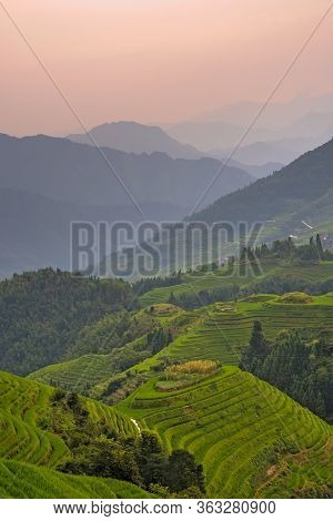Vertical Shot Of Sunset Over Seven Stars Accompany The Moon Cascading Layered Rice Terraces Forming