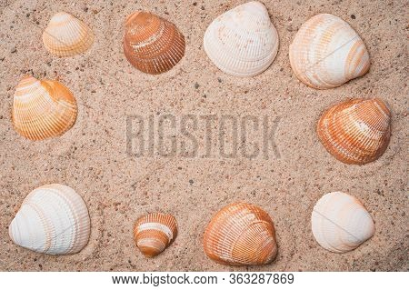 Frame Made Out Of Seashells On A Golden Beach Sand. Summer Seaside Travel Concept. Copy Space In The