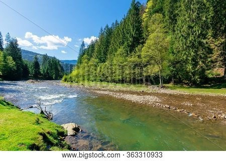 River Scenery Among The Forest In Mountains. Beautiful Alpine Landscape In Spring. Synevyr National
