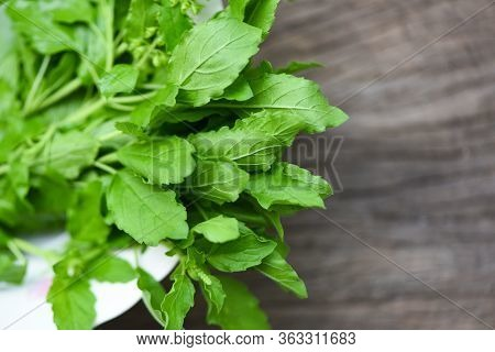 Holy Basil Leaf Nature Vegetable Garden On Bowl And Wooden Table Kitchen Herb And Food - Ocimum Sanc