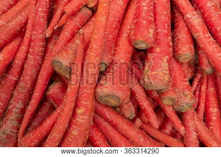 Carrot, Daucus Carota , Is A Root Vegetable, Usually Orange In Colour, A Domesticated Form Of The Wi