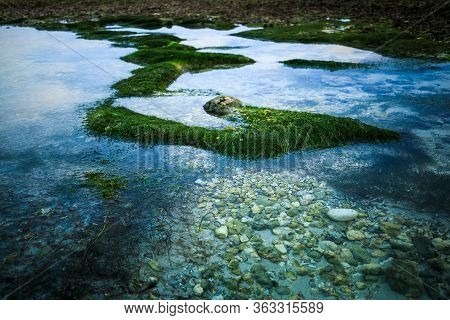 Seascape. Ocean During Low Tide. Waterscape. Clear Water With Stones And Sand. Long Green Seaweed. S