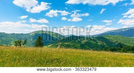 Fields And Meadows Of Rural Landscape In Summer. Idyllic Mountain Scenery On A Sunny Day. Grass Cove