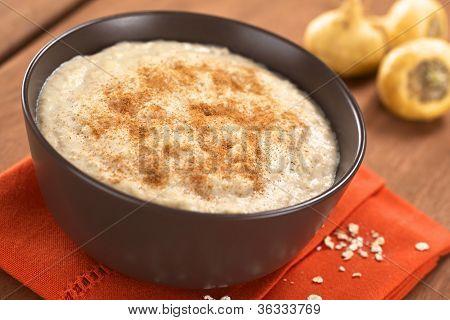 Maca-Oatmeal Porridge with Cinnamon