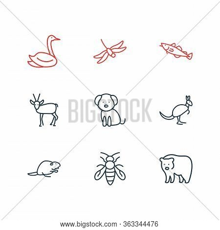Vector Illustration Of 9 Animals Icons Line Style. Editable Set Of Bee, Beaver, Antelope And Other I