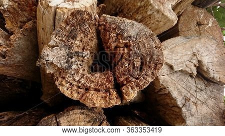 Detail Of Broken Old Teak Wood Texture