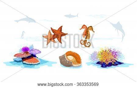 Inhabitants Of Seabed Multicolor Coral Reefs, Starfishes, Seahorses, Veined Rapa Whelk, Mollusks, In