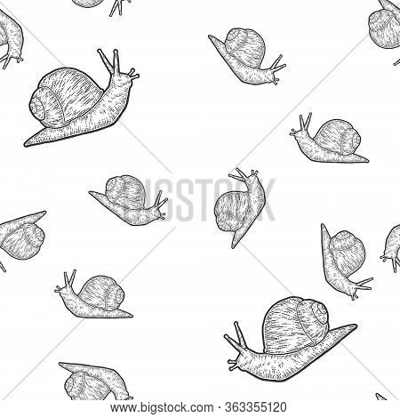 Seamless. Snail Gastropods, Isolated Animal. Sketch Scratch Board Imitation.