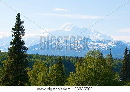 Mount Denali or McKinlye