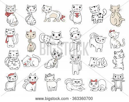 Cats. Domestic Pets Funny Hand Drawn Animals Vector Collection. Illustration Domestic Kitten Pet, An