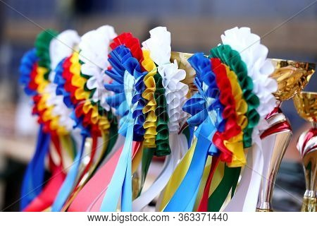 Group Of Horse Riding Equestrian Sport Trophies Awards At Equestrian Racehorse Event At Summertime