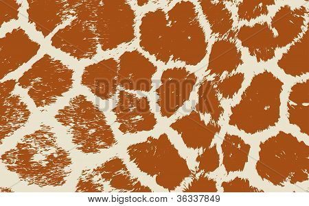 Colorful Animal skin textures of giraffe. Vector illustration wild pattern