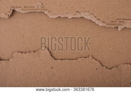 Old Textured Cardboard Sheet With Torn Edges. Brown Cardboard Torn Off. Cardboard Texture. A Sheet O