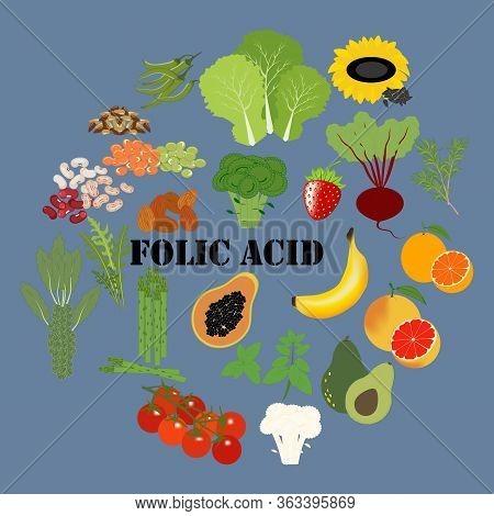 Folic Acid Nutrient Rich Food Vector Illustration