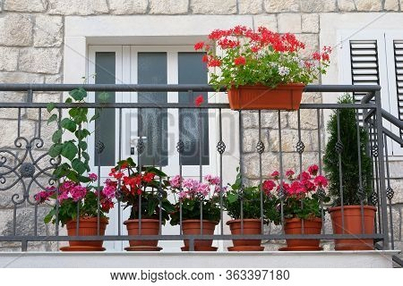 Pots With Bushes Of Blooming Plants On Balcony. Landscape Design. Geranium And Other Decorative Flow