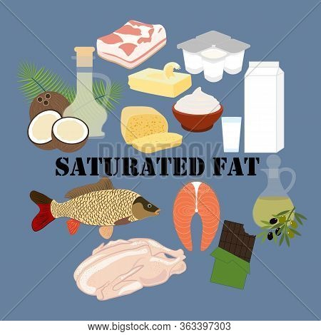 Saturated Fat Nutrient Rich Food Vector Illustration