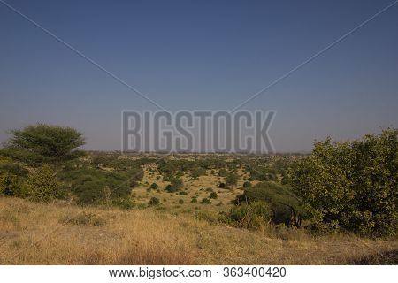 Plainland In The African Savannah On A Sunny Day