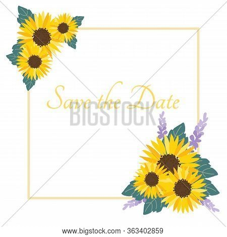 Sunflowers Illustration For Invitation Card. Save The Date, Invitation.