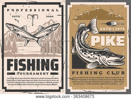 Fishing Club And Fisher Big Fish Catch Tournament, Vector Retro Vintage Posters. Lake Pike And Perch