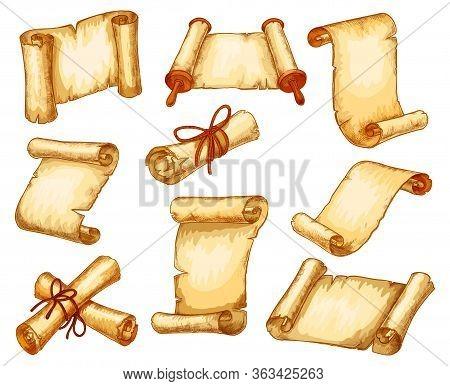 Parchment Paper Scroll Manuscripts Rolls Sketch Vector