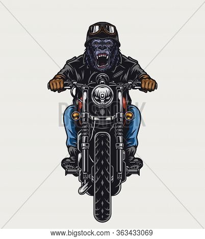 Cruel Gorilla Head Biker Riding Motorbike In Vintage Style On Light Background Isolated Vector Illus