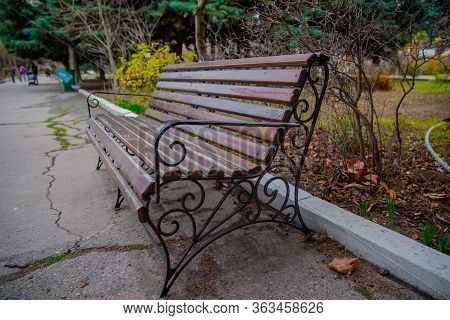 Blank Old Bench In A Shady Area Of The Garden Or The Park, Outdoor. Shaded Wood Park Bench Surrounde