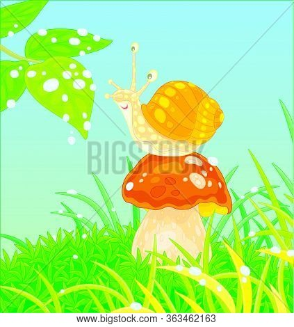 Funny Garden Snail With A Beautiful Spotted Shell, Sitting On A Big Mushroom Among Green Grass On A