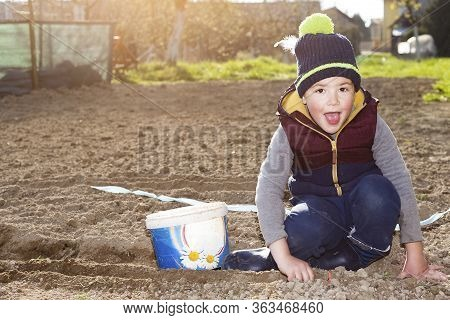 The Young Boy Is Happy To Plant A Garden. It Is Illuminated By The Gentle Evening Sun When Placing T