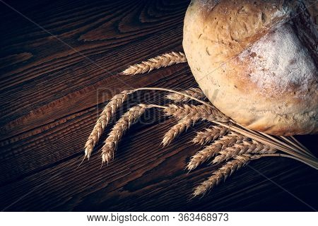 Homebaked Bread. Loaf Of Peasant Bread And Spikelets Of Wheat On A Wooden Background. Homemade Bakin