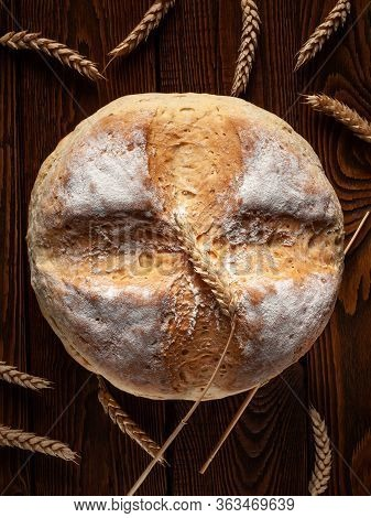 Homebaked Bread. Top View Of A Loaf Of Round Peasant Bread And Spikelets Of Wheat On A Wooden Backgr