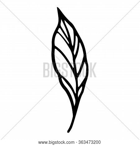 Peony Leaf Icon. Hand Drawn Illustration Of Peony Leaf Vector Icon For Web Design