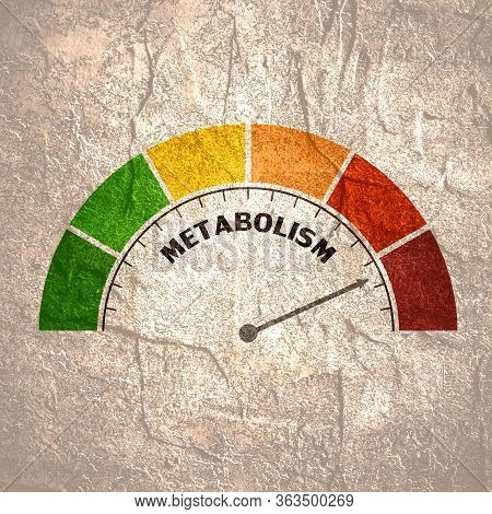Metabolism Level Scale With Arrow. The Measuring Device Icon. Sign Tachometer, Speedometer, Indicato