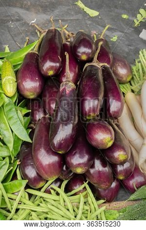 Brinjal Is A Plant Species In The Nightshade Family Solanaceae. Solanum Melongena Is Grown Worldwide