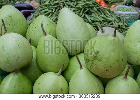 Calabash, Bottle Gourd, Or White-flowered Gourd, Lagenaria Siceraria, Is A Vine Grown For Its Fruit.
