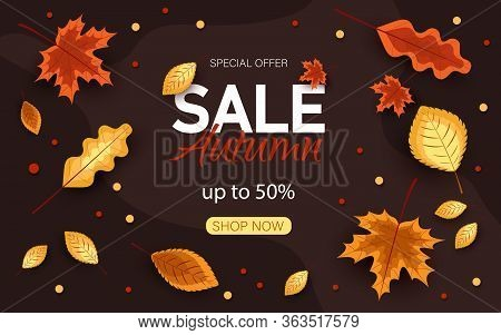 Autumn sale vector background. Autumn sale and discount text in brown space with maple autumn leaves in autumn textured background for fall season marketing promotion. Vector autumn illustration.