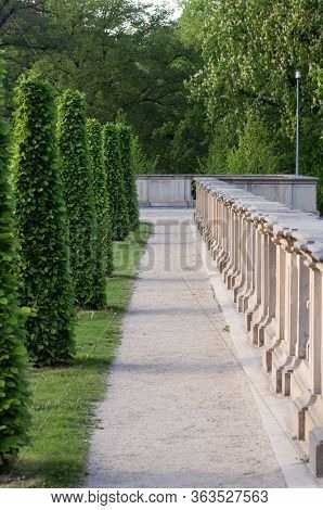 City Park Landscape. A Beautiful Alley With Trees And The Parapet