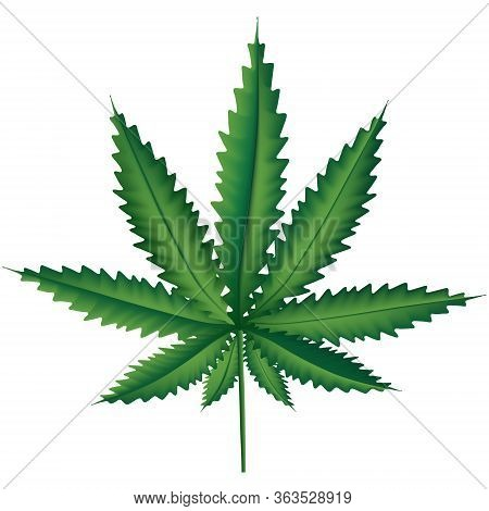 Medical Marijuana Leaf, Marihuana Plant Illustration, Hemp Leaf, Nature Relax Symbol In Vector