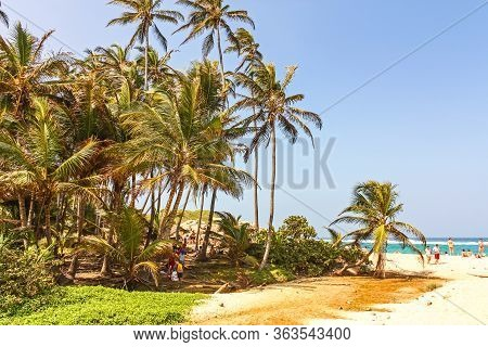 Caribbean, Colombia - Jan 7: Caribbean Beach With Tropical Forest In Tayrona National Park, Colombia